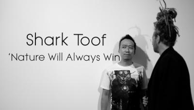 SharkToof-11 ©Taiyo Watanabe