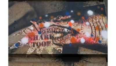 shark 05 (ZERO+)