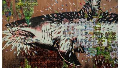 shark 06 (ZERO+)