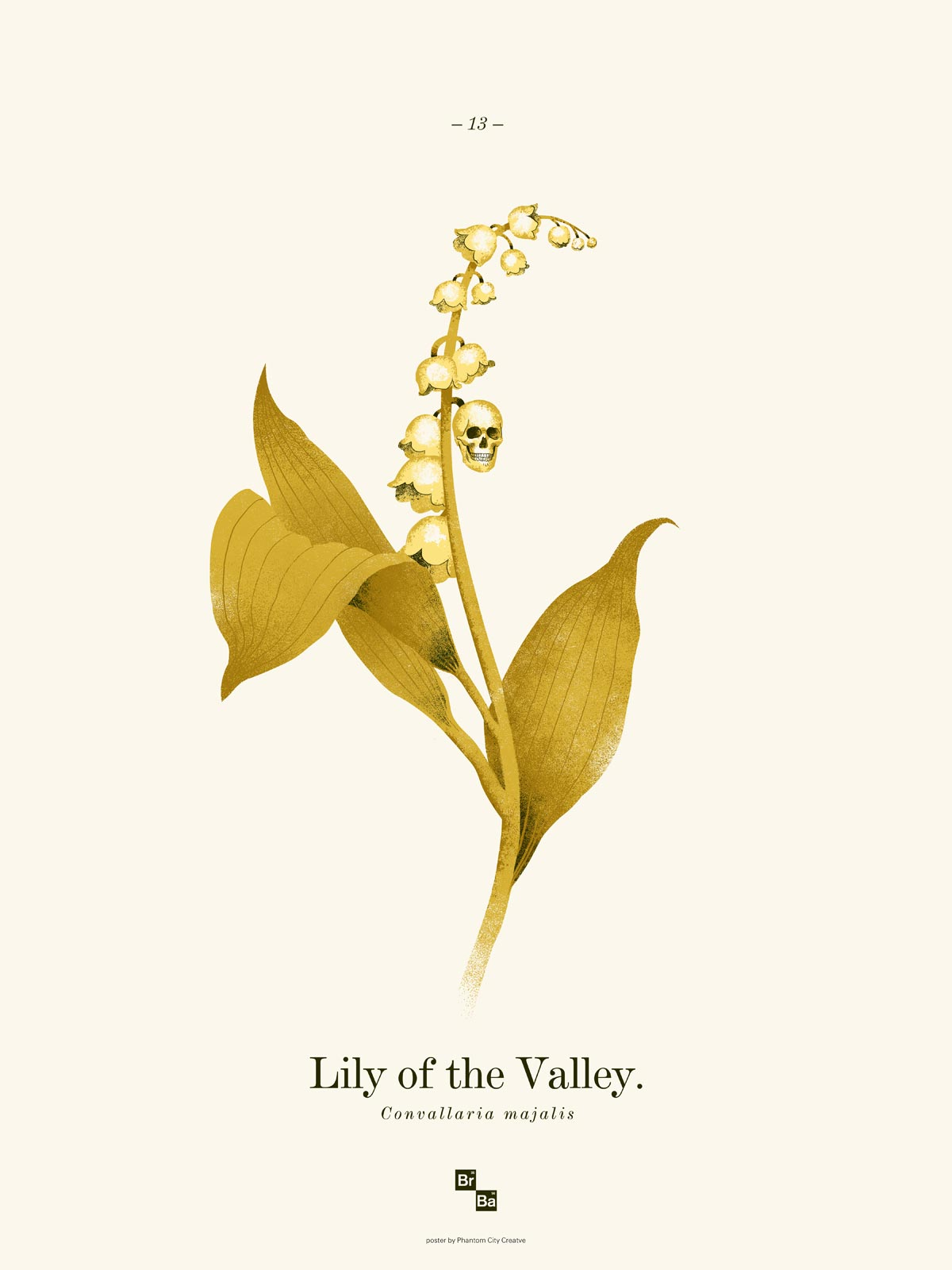 Lily of the Valley / Phantom City Creative