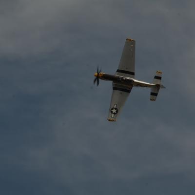 113 Eddie Andreini Airshows
