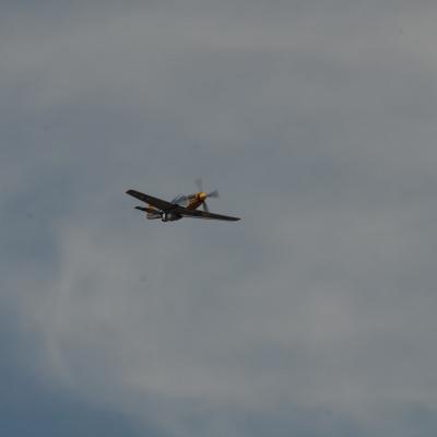 114 Eddie Andreini Airshows