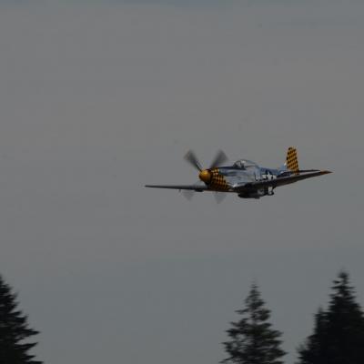 117 Eddie Andreini Airshows