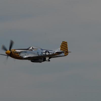 118 Eddie Andreini Airshows