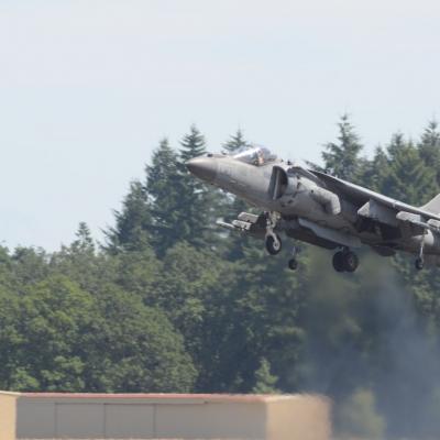 81 U.S. Marine Corps AV-8B Harrier II Demo