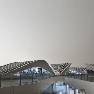 © Zhenfei Wang, Chenggui Wang 05