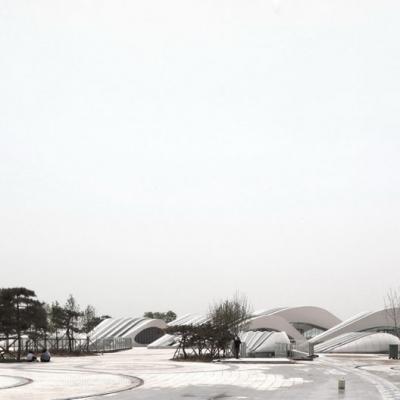 © Zhenfei Wang, Chenggui Wang 07