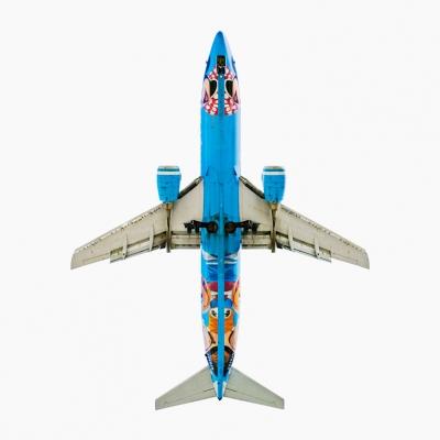 Alaska Airlines 'Disneyland' Boeing 737-400