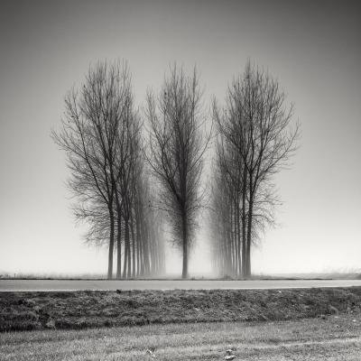 Three Neat Rows