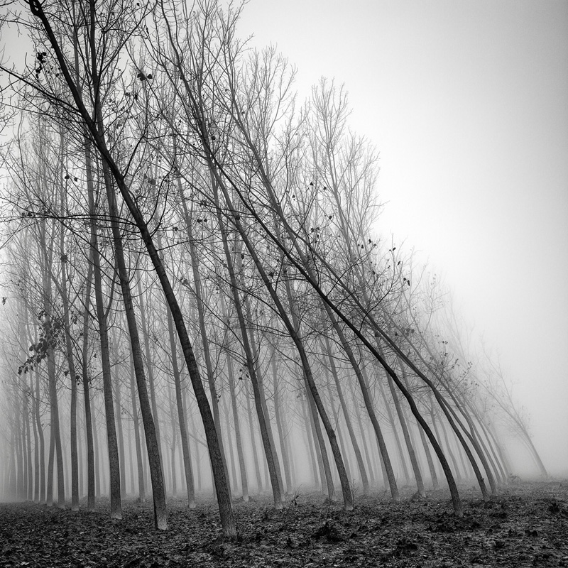 Landscapes / Pierre Pellegrini / The Superslice
