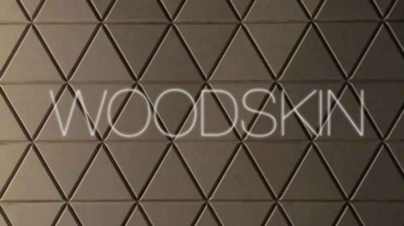 woodskin_02